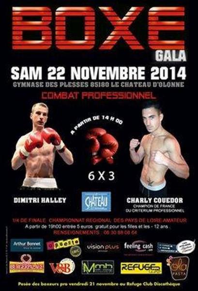 gala-boxe
